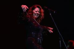 Sandra Ann Lauer Concert Images libres de droits