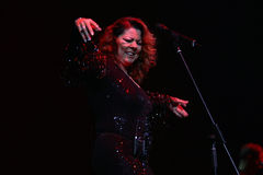 Sandra Ann Lauer Concert Royalty Free Stock Images