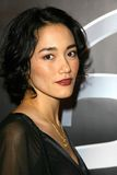 Sandrine Holt Stock Images