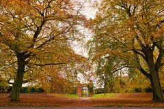 Sandringham beech trees. Colourful autumn beech trees on the royal Sandringham estate with a garden entrance below Royalty Free Stock Photography