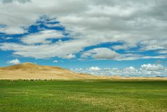 Sands Mongol Els