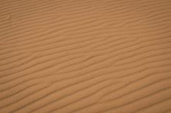 Sands of Sahara. Sands in Sahara desert with footprints of dung beetles Stock Images