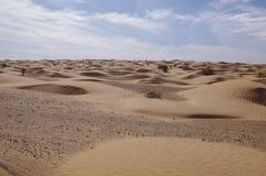 Sands of Sahara. Tunisian Sahara Dunes in a sea of sand Stock Image