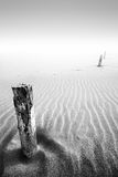 The Sands of Time. Three wooden poles in the sand of a foggy beach Royalty Free Stock Image