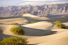 sandscape śmiertelna dolina Zdjęcie Stock