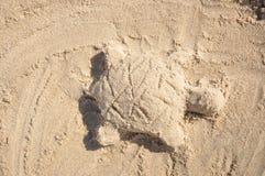 Sandschildkröte Stockfoto