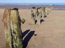 Sandsend plażowi drewniani stosy Zdjęcia Royalty Free