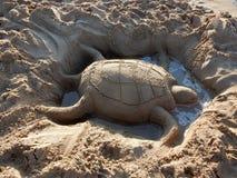 Sandsköldpadda Arkivfoto