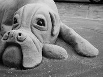 Sandskulpturhund i den chester stadskärnan Arkivfoto
