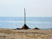 Sandslott på strand Arkivfoton