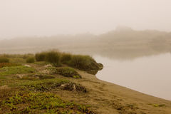 Sandspit in a marshy area of a bay Royalty Free Stock Photos