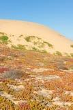 Sandstad Kalifornien arkivfoto