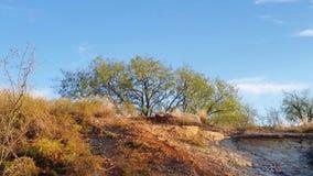 Sandstein überlagerter Damm Stockfotos