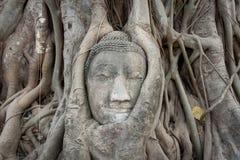Sandstein Buddha Lizenzfreie Stockfotos