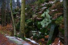 Sandsteinfelsen mit Moos im Wald lizenzfreie stockfotos