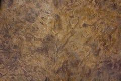 Sandsteinfußbodenlack Stockbild