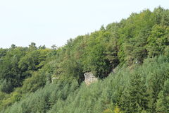 Sandsteinklippen im Wald Lizenzfreies Stockbild