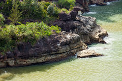 Sandsteinklippen an Nationalpark Borneo Bako Lizenzfreie Stockfotos