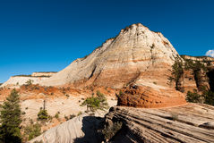 Sandsteinklippen zion im Nationalpark Stockfotografie