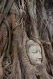 sandsten för buddha framsida s Arkivbilder