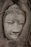 sandsten för buddha framsida s Fotografering för Bildbyråer