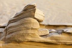 Sandsten i öknen Arkivbild