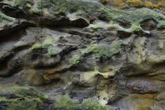 Sandsten i saxony Schweiz fotografering för bildbyråer