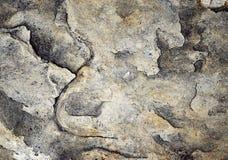 Sandsten med en lättnad av avbrottet Royaltyfria Foton