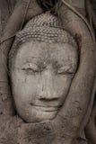 Sandstone Buddha's Face Stock Image