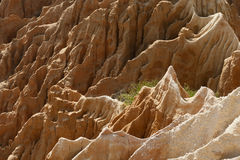 Sandstone cliff Royalty Free Stock Photos