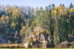 Sandstone cliff on Amata river, Latvia Royalty Free Stock Photos