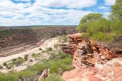 Sandstone Cliff Edges in Kalbarri Royalty Free Stock Photography