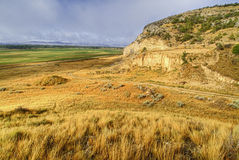 Sandstone cliff and grasses Royalty Free Stock Photography