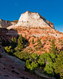 Sandstone cliffs in zion national park Royalty Free Stock Photos