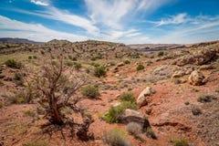 Sandstone desert lanscape Stock Image