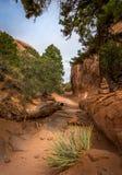 Sandstone desert lanscape Stock Photos