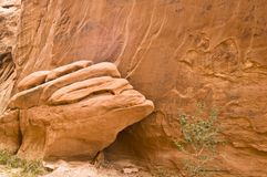 Sandstone Detail Royalty Free Stock Photography