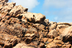 Sandstone em rochas do canal, Austrália Imagem de Stock
