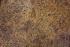 Sandstone floor paint Stock Image