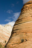 Sandstone formations. View of sandstone formations in Zion National Park Stock Images