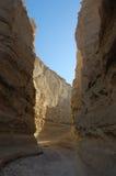 Sandstone formations in Negev desert. Stock Image