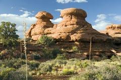 Sandstone Hoodoos in Grand Canyon. Orange sandstone hoodoo formations in Grand Canyon National Park Royalty Free Stock Photos