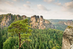 Sandstone Mountains in Saxony Royalty Free Stock Image