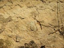 Sandstone Pattern Royalty Free Stock Image