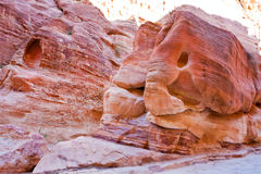 Sandstone rock elephant in gorge Siq in Petra Stock Images