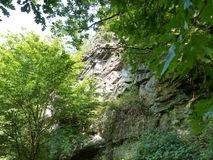 Sandstone rock face hidden by summer trees Royalty Free Stock Photo