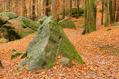 Sandstone rock in forest Stock Photography
