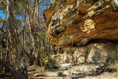 Sandstone Rockface Royalty Free Stock Images