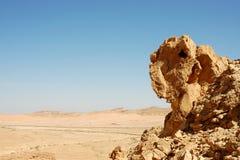 Sandstone rocks in Negev desert. Stock Images