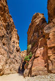 Sandstone rocks in Siq at Petra Royalty Free Stock Images